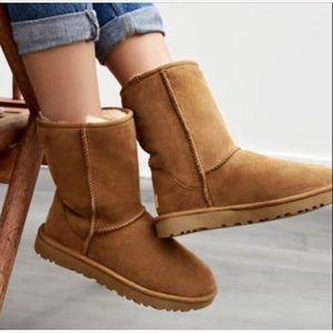 UGG like new classic short chestnut boots